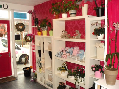 Lily Lovedays shop interior 1
